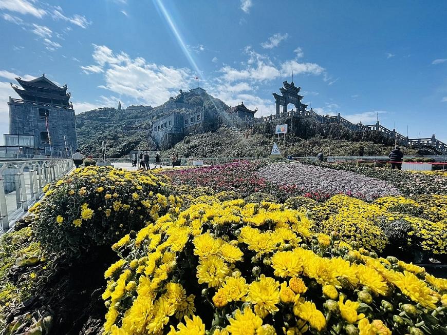 """Khắp khu lịch rực rỡ muôn màu với những đại cảnh, tiểu cảnh kiến tạo từ bắp cải tím, cải trắng, cúc mâm xôi, hoa xác pháo, hoa hồng… Đặc biệt, đại cảnh Vạn hoa dâng Phật được làm từ hoa tươi có diện tích 150m2 trên khu vực sân mây cùng bức tường hoa treo chữ """"lộc"""" và """"bình an"""" tại Bích Vân Thiền Tự mang đến một không gian thiền tịnh, an yên chưa từng có trên hành trình du xuân trên đất Phật, cõi mây. Ngắm muôn hoa xuân khoe sắc, thưởng lãm anh đào Nhật Bản, anh đào Himalaya và đào rừng Sa Pa nở rộ tưng bừng trên hành trình chinh phục nóc nhà Đông Dương và du xuân chiêm bái Phật cầu an dịp năm mới, đến Sun World Fansipan Legend là hưởng trọn vị xuân trọn vẹn, mê say."""
