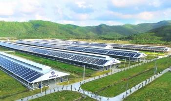 Vinamilk đầu tư hệ thống năng lượng mặt trời tại 12 trang trại bò sữa