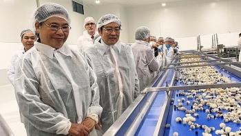 Khánh thành Nhà máy chế biến sản phẩm cam, nhãn cô đặc đầu tiên tại Việt Nam
