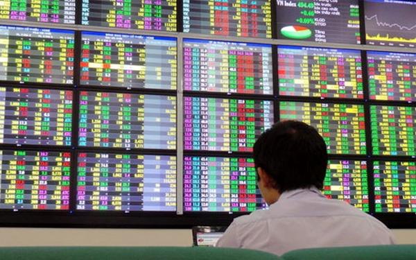 Công ty cổ phần Quản lý và đầu tư Trường Giang bị phạt 45 triệu đồng