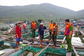Bình Định dự kiến di dời hơn 1.000 hộ dân vùng ven biển tránh bão số 10