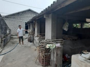 Tiếp vụ tiêu hủy lợn bị dịch tả lợn châu Phi ở xã Quảng Minh, huyện Hải Hà, tỉnh Quảng Ninh: Đề nghị UBND huyện Hải Hà tiếp tục chỉ đạo làm rõ nội dun