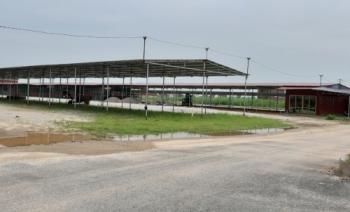 Phường Đồng Kỵ, thị xã Từ Sơn, tỉnh Bắc Ninh: Dự án chồng dự án, quyền lợi người dân chưa được bảo đảm