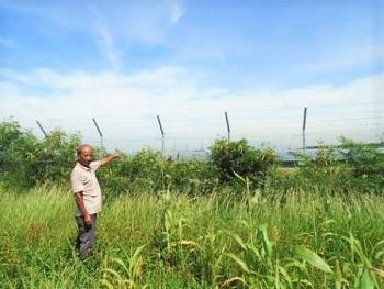 Ninh Thuận: Đất khai hoang khi thu hồi cần phải đền bù