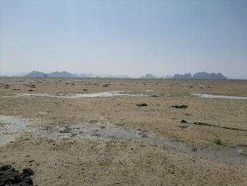 Phạt một công ty tự ý đổ cả chục nghìn m3 đất xuống vịnh Bái Tử Long