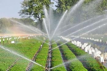 Vai trò của công nghệ cao trong ứng dụng phát triển nông nghiệp tại Việt Nam (Bài 1)