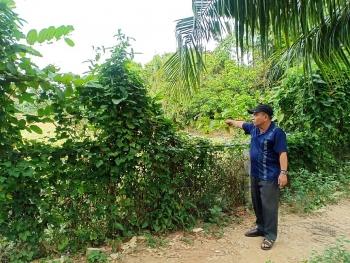 UBND tỉnh Đồng Tháp cần chỉ đạo Cơ quan CSĐT Công an tỉnh vào cuộc điều tra làm rõ