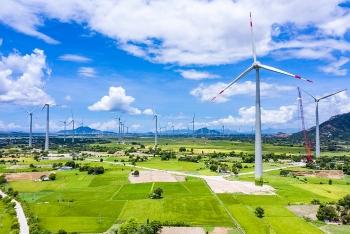 Đắk Lắk cất cánh cùng điện gió