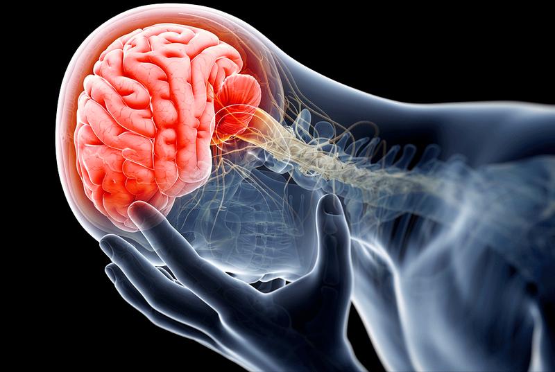 Sức khỏe não bộ (Kì 2)